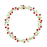 Wreath of a cranberry. Royalty Free Stock Photos