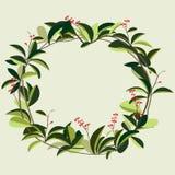Wreath of creeper flower Stock Photo