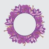 Wreath of Crocus Flowers and Saffron Threads Template on Grey Ba vector illustration