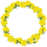 Wreath from dandelions Stock Photo
