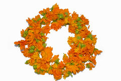 Wreath der Potenziometerringelblumen, Calendula officinalis Stockfoto