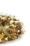 Wreath of dry branches and flowers. Wreath of dry branches, spices and orchid flowers  on white background Stock Photo