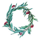 Wreath. Eucalyptus. wreath. hollydays. botanical illustration. botanical. watercolor. this picture can be used as a background, individual objects or postcards Royalty Free Stock Photo