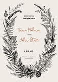 The wreath of ferns leaves. Wedding invitation in the style of boho. Vector botanical vintage illustration. Black and white Royalty Free Stock Images