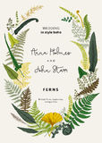 The wreath of ferns leaves. Wedding invitation in the style of boho. Vector botanical vintage illustration. Colorful Stock Image