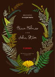 The wreath of ferns leaves. Wedding invitation in the style of boho. Vector botanical vintage illustration. Colorful Royalty Free Stock Images