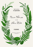 The wreath of ferns leaves. Wedding invitation in the style of boho. Vector botanical vintage illustration. Green Royalty Free Stock Photos