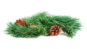 Wreath of fir branches isolated on white background, selective f Royalty Free Stock Images