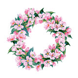A wreath of flowering branches of Apple trees.Watercolor Vector Royalty Free Stock Photography