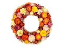 Wreath of flowers Stock Photos
