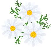 The wreath of flowers Royalty Free Stock Image