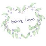 Wreath (frame) of blueberry Stock Photo