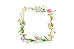 Wreath frame made of pink and beige wildflowers, green leaves, branches on white background Royalty Free Stock Photography