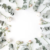 Wreath frame with roses, eucalyptus branches, leaves and petals isolated on white background Stock Photo