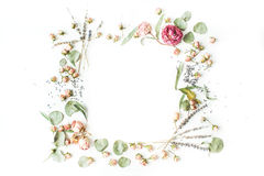Wreath frame with roses, lavender, branches, leaves and petals isolated on white background Stock Image