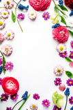 Wreath frame with roses, muscari, chamomile, ranunculus, branches, leaves Royalty Free Stock Image