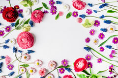 Wreath frame with roses, muscari, chamomile, ranunculus Royalty Free Stock Photography