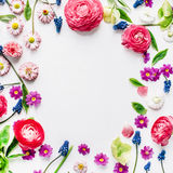 Wreath frame with roses, muscari, chamomile, ranunculus, branches, leaves Royalty Free Stock Photos
