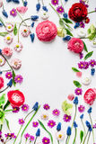 Wreath frame with roses, muscari, chamomile, ranunculus, branches, leaves, petals and buds isolated on white background Stock Photography