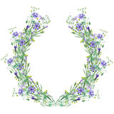 Wreath (frame) of wildflowers and cornflowers Royalty Free Stock Photography