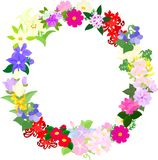 The wreath of fruits Stock Photo