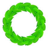 A wreath of green leaves Royalty Free Stock Photos