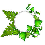 Wreath of green leaves with frame for text. Wreath of bright green different leaves with circular frame for your text. Vector illustration in cartoon style Royalty Free Stock Photos