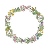 Wreath from hand drawn herbs and flowers Stock Images