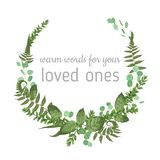 Wreath with herbs and leaves isolated on white background. Botanical illustration. Boxwood, eucalyptus, forest fern. Save the dat. E, invitations, cards. Design stock illustration