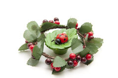 Wreath with ladybird Royalty Free Stock Images
