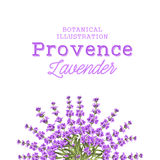 Wreath of lavender flowers Royalty Free Stock Photo
