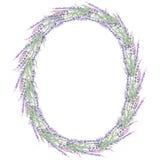 Wreath of lavender vector illustration