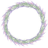 Wreath of lavender. Painted with watercolors on a white background , decoration postcard or invitation Stock Photos