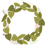 Wreath of leaves and grasses Stock Photos
