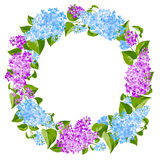 Wreath of lilac twigs Stock Images