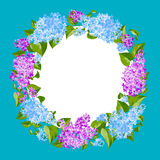 Wreath of lilac twigs Royalty Free Stock Photos