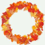 Wreath made of autumn flowers and leaves on light background. Autumn composition. EPS 10 vector illustration