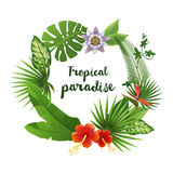 Wreath made of tropical leaves and flowers Royalty Free Stock Photography