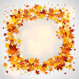 Wreath of maple leaves Royalty Free Stock Photos