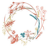 Wreath with meadows herbs Stock Image