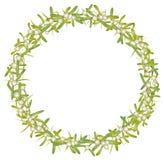 Wreath with mistletoe. Colorful Christmas decoration Stock Photos