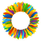 Wreath of multicolored petals of sunflower royalty free stock photos