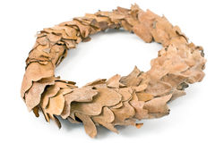 Wreath of oak leaves Stock Photos