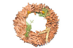 Wreath of oak leaves Royalty Free Stock Images