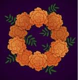 Wreath of orange marigolds. Vector illustration on dark background Stock Photo