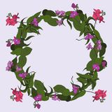 Wreath of Orchids Stock Photography