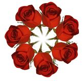 Wreath out of red rose. Isolated on white Stock Photo