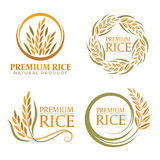 Wreath paddy premium rice natural product banner sign vector design vector illustration