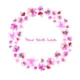 Wreath of painted watercolor  flowers Stock Photography