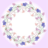 Wreath with pink and blue bindweed Royalty Free Stock Images